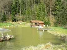 Angelurlaub Bayerischer Wald Angelteich Karpfen angeln