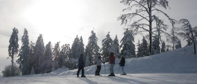 Skifahren Böhmerwald Skigebiet Hochficht Zwieselberg